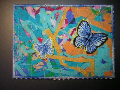 Pour Christiane L. avec ces papillons qui cherchent le soleil.